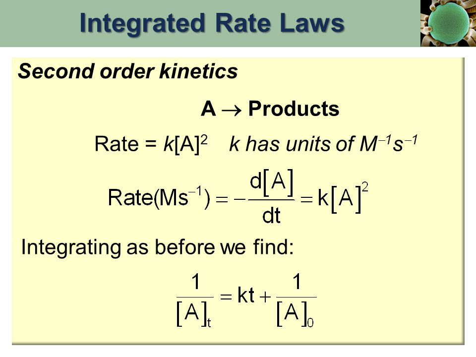 Integrated Rate Laws Second order kinetics A  Products Rate = k[A]2